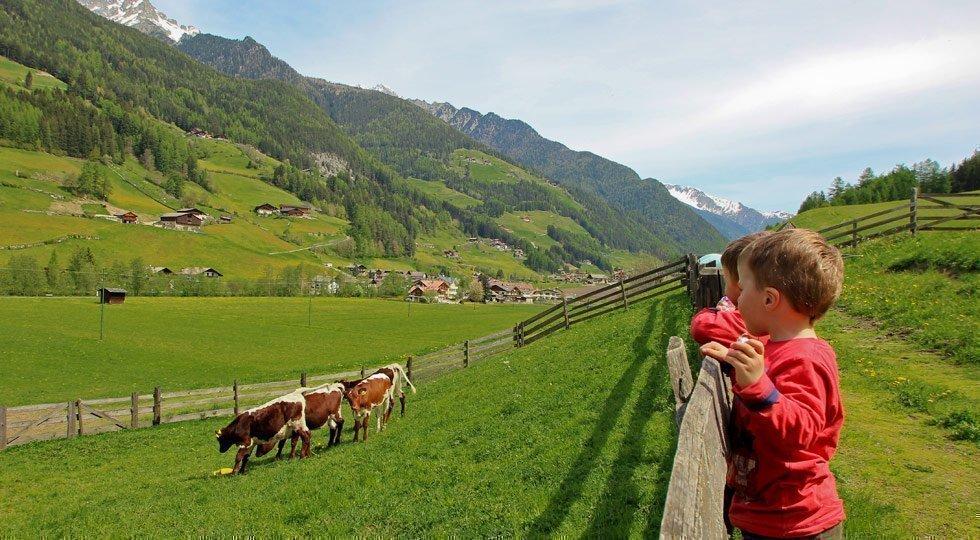 Sommerurlaub auf dem Bauernhof im Tauferer Ahrntal