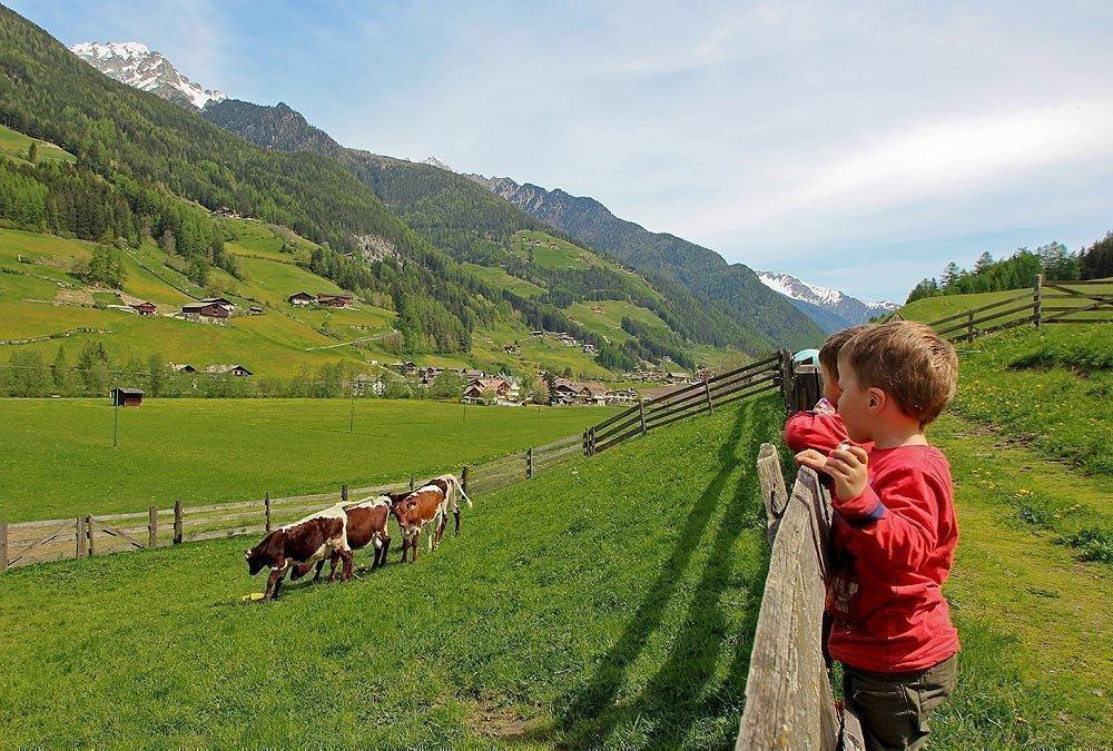Vacanze in famiglia in montagna al maso Weissnbachlhof